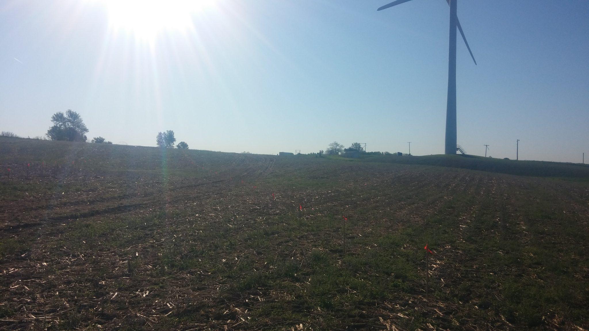 Solar Array Progress 9