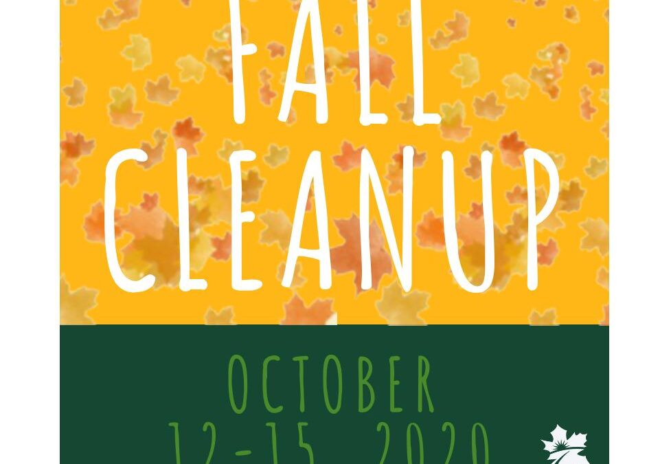Fall Clean Up 2020